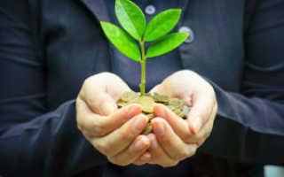 Благоприятный инвестиционный климат