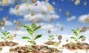 Характеристика инвестиционного климата россии