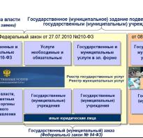 Организация предоставления муниципальных услуг