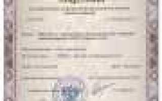 Страхование ответственности таможенного брокера