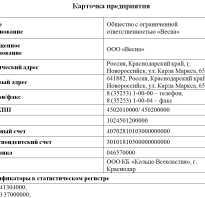 Образец карточки контрагента организации
