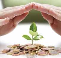 Как правильно вложить деньги в бизнес