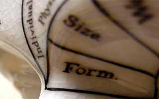 Материальные и нематериальные инвестиции