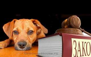 52 оз об административных правонарушениях