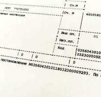 Платежное поручение на оплату штрафа