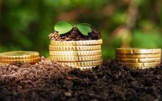 Государственные инвестиции в сельское хозяйство