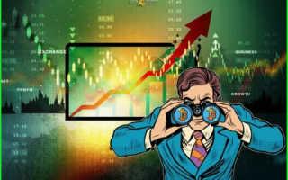 Как научиться торговать на бирже криптовалют